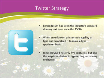Flower field PowerPoint Template - Slide 9