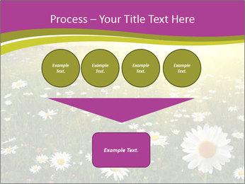 Flower field PowerPoint Template - Slide 93