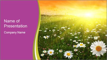 Flower field PowerPoint Template