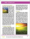 0000091625 Word Template - Page 3