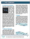 0000091630 Word Template - Page 3