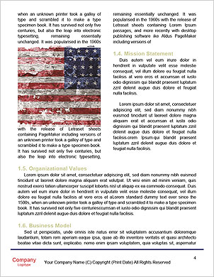 0000091636 Word Template - Page 4