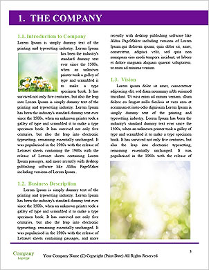 0000091638 Word Template - Page 3