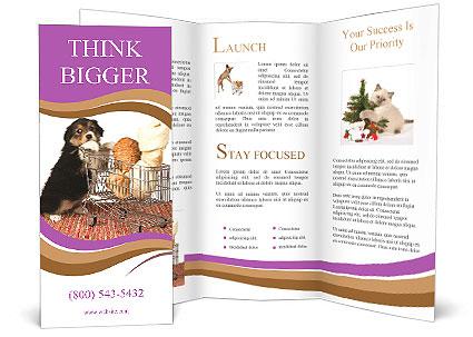 0000091641 Brochure Template
