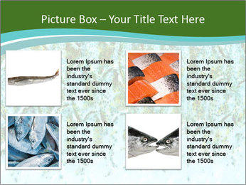 The fish PowerPoint Template - Slide 14