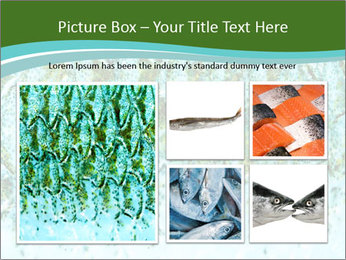 The fish PowerPoint Template - Slide 19
