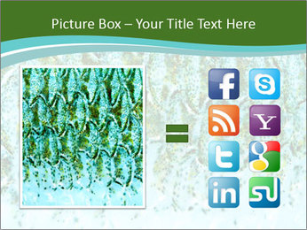 The fish PowerPoint Template - Slide 21