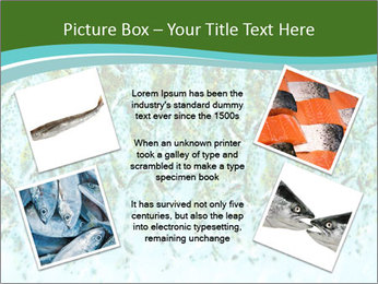 The fish PowerPoint Template - Slide 24