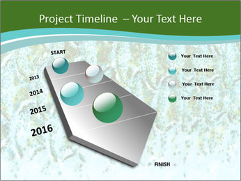 The fish PowerPoint Template - Slide 26