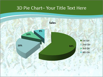 The fish PowerPoint Template - Slide 35