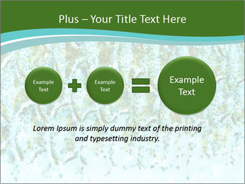 The fish PowerPoint Template - Slide 75