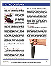 0000091644 Word Template - Page 3