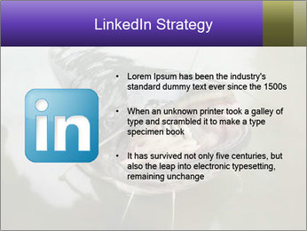 Catfish PowerPoint Template - Slide 12