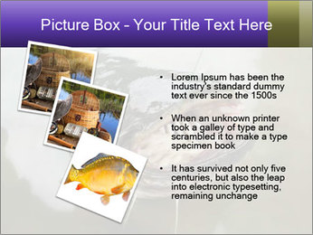 Catfish PowerPoint Template - Slide 17