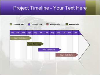 Catfish PowerPoint Template - Slide 25