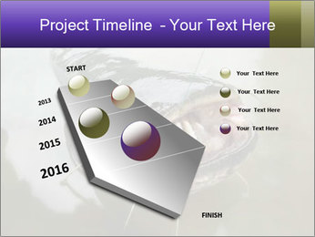 Catfish PowerPoint Template - Slide 26