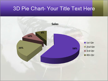 Catfish PowerPoint Template - Slide 35