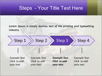 Catfish PowerPoint Template - Slide 4