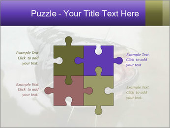 Catfish PowerPoint Template - Slide 43