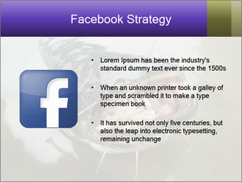 Catfish PowerPoint Template - Slide 6
