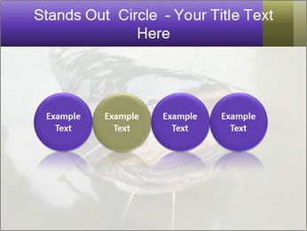 Catfish PowerPoint Template - Slide 76