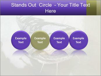 Catfish PowerPoint Template - Slide 76