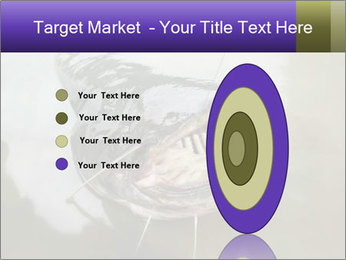 Catfish PowerPoint Template - Slide 84