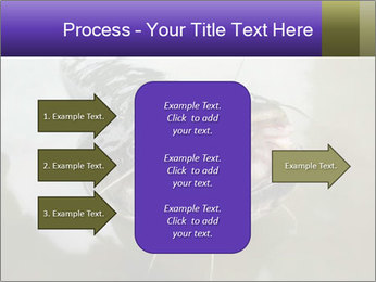 Catfish PowerPoint Template - Slide 85
