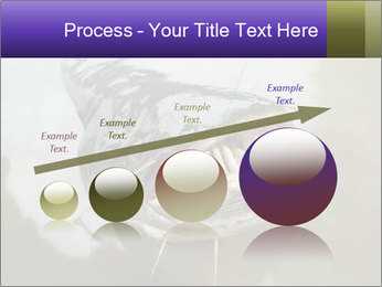 Catfish PowerPoint Template - Slide 87