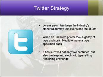 Catfish PowerPoint Template - Slide 9