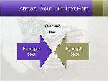 Catfish PowerPoint Template - Slide 90