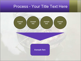 Catfish PowerPoint Template - Slide 93