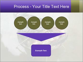 Catfish PowerPoint Template - Slide 93