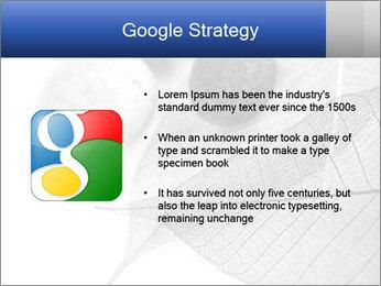 Zen stones PowerPoint Templates - Slide 10