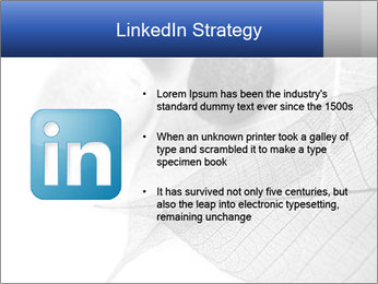 Zen stones PowerPoint Templates - Slide 12