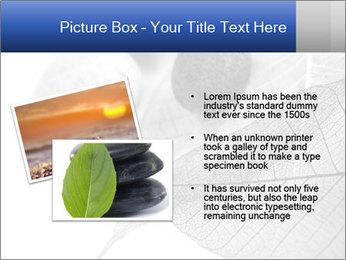 Zen stones PowerPoint Templates - Slide 20
