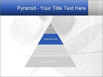 Zen stones PowerPoint Templates - Slide 30