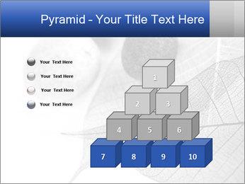 Zen stones PowerPoint Templates - Slide 31