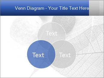 Zen stones PowerPoint Templates - Slide 33