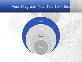Zen stones PowerPoint Templates - Slide 34