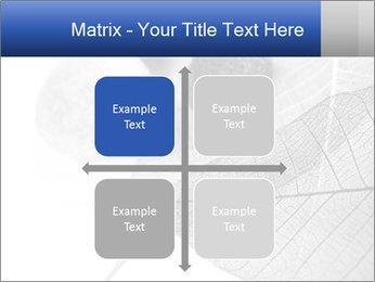 Zen stones PowerPoint Templates - Slide 37