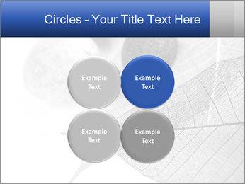 Zen stones PowerPoint Templates - Slide 38