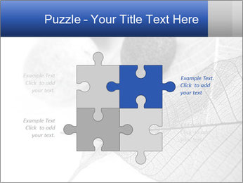 Zen stones PowerPoint Templates - Slide 43