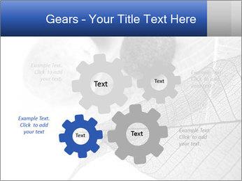 Zen stones PowerPoint Templates - Slide 47