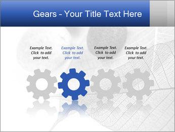 Zen stones PowerPoint Templates - Slide 48