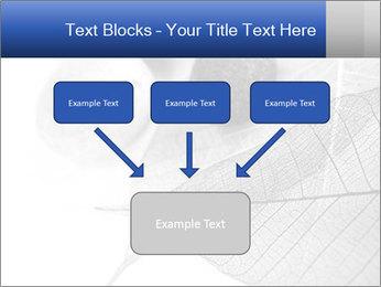 Zen stones PowerPoint Templates - Slide 70
