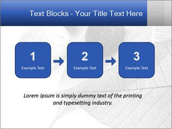 Zen stones PowerPoint Templates - Slide 71