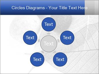 Zen stones PowerPoint Templates - Slide 78