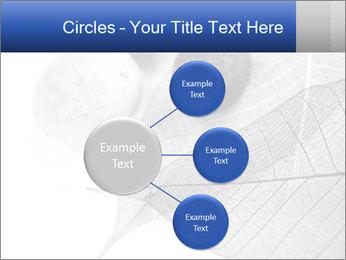 Zen stones PowerPoint Templates - Slide 79