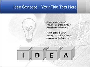 Zen stones PowerPoint Templates - Slide 80